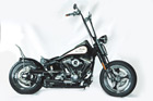 Harley-Davidson Softail Umbau - White Angel